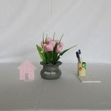 Bucket, Pot Kedeplek Mini Tulip - Pink